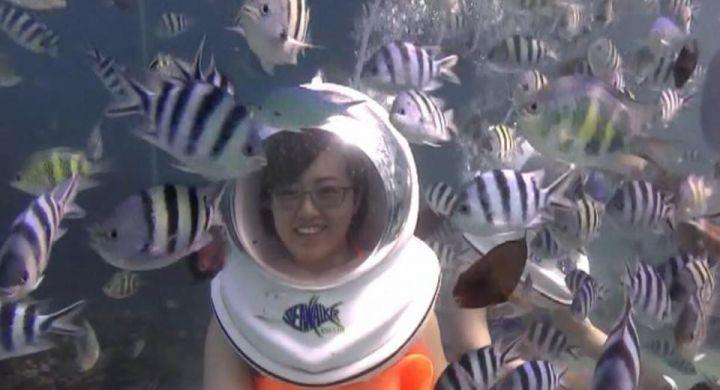 參加海底漫步活動不需要會游泳,也不需要潛水,只需戴上特製的太空帽。(圖片提供/關島之家成員Mia Huang)