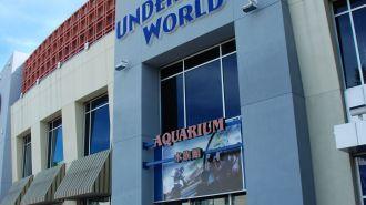 關島海底世界水族館 Under Water World
