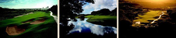關島有8座國際級的高爾夫球場,其中一座正位於 Leo Palace Resort 之內。