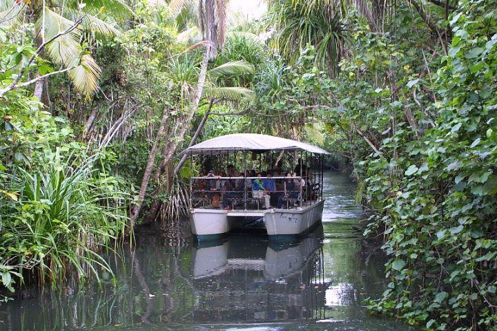 由於該河是關島重要的水源區,所以保留著原始風貌。