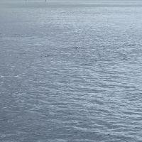 關島美人魚公主號出海行程