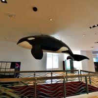 關島海底世界水族館